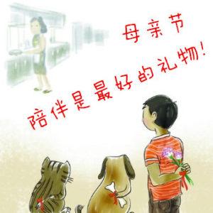 La pubblicità cinese per la festa della mamma